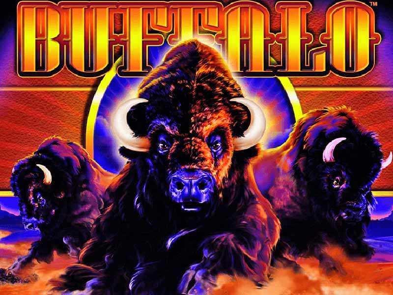 Buffalo slots Machine